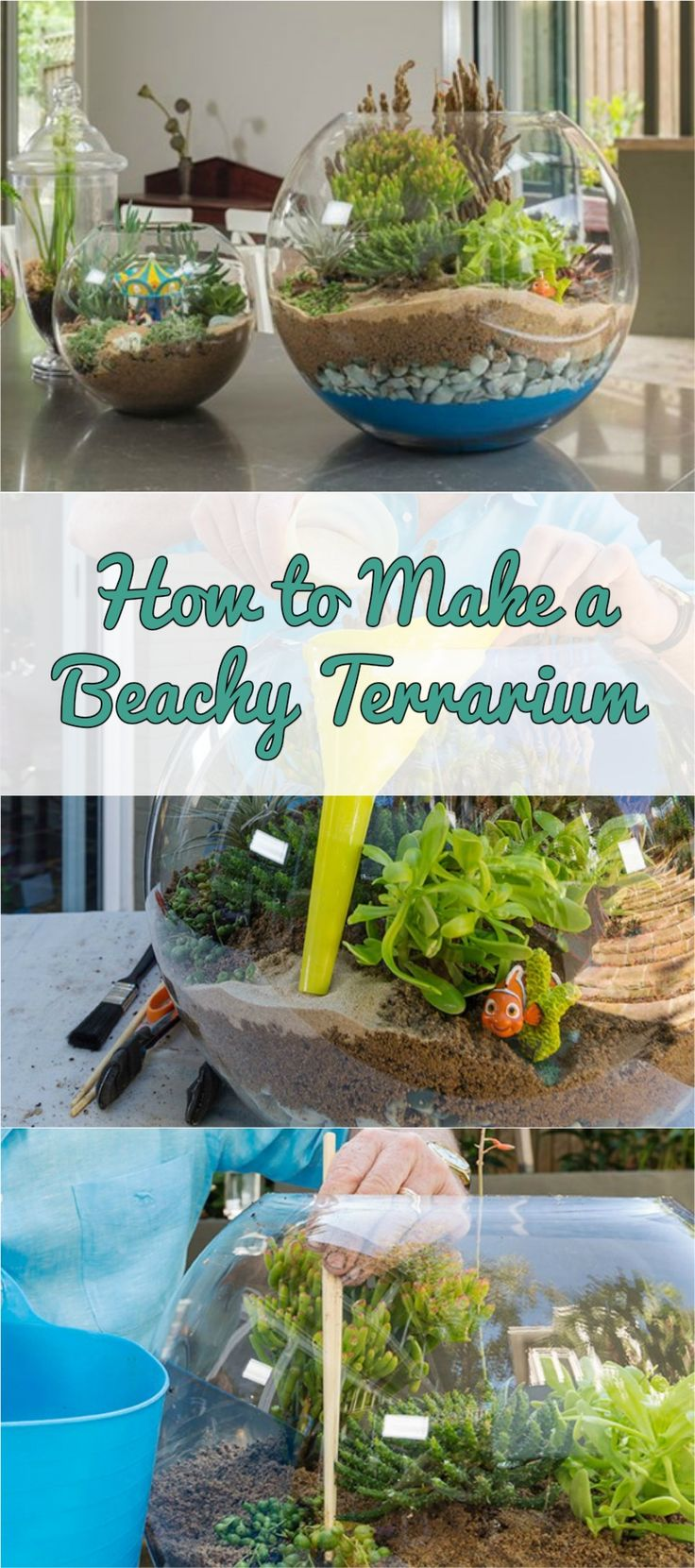 How to Make a Beachy Terrarium #diy