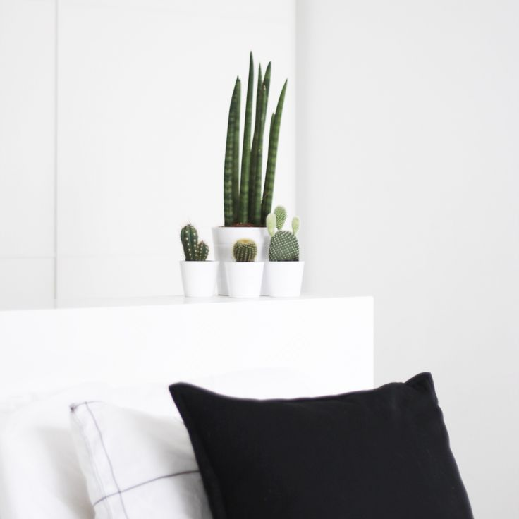 Bedroom | Myhome