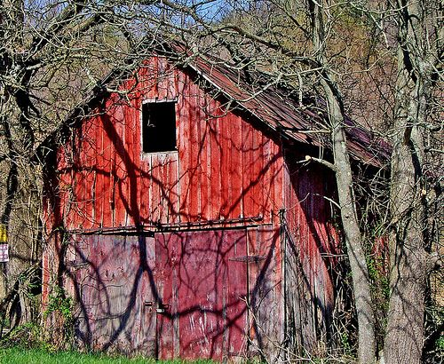 Hues of Red  Ross County, Ohio: Barns 10, Beautiful Barns, Endangered Barns, Children'S Children, Barns Rai, Barns Farms, Country Barns Cabins Chalets, Old Barns, Barns 0