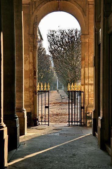 Tout au long de l'année et encore plus pendant les fêtes, j'adore me balader dans les jardins du Palais Royal. La lumière au petit matin ou en fin de journée y est particulière.