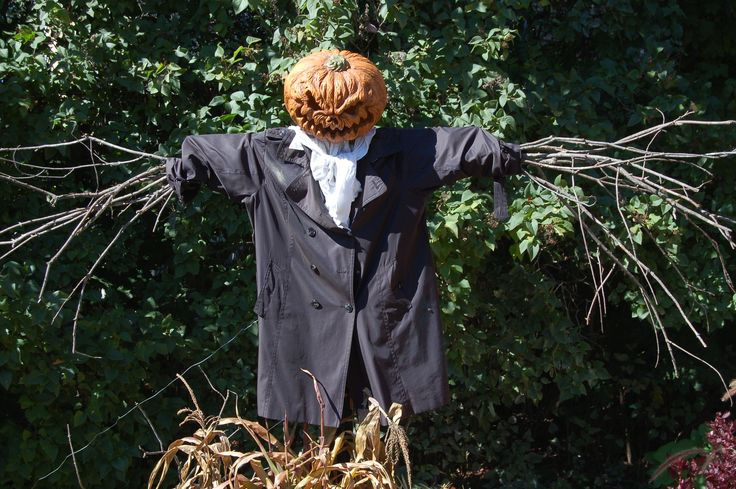 This decoration brings two traditional Halloween themes into play: the Headless Horseman and the scarecrow. Here are instructions for making a quality scarecrow: http://landscaping.about.com/od/garden-craft-project/a/How-To-Make-A-Scarecrow.htm