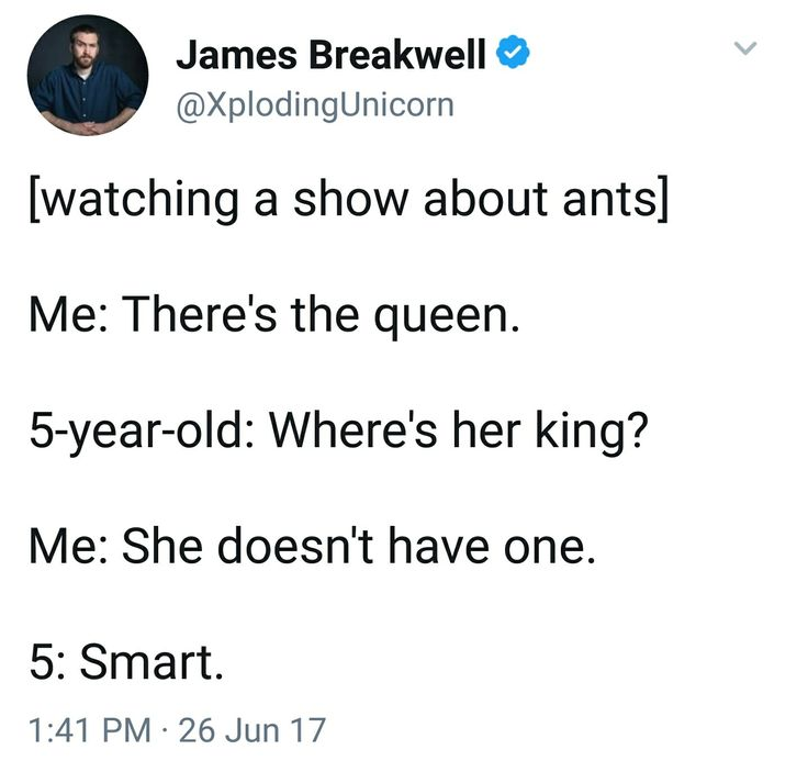 Kings and queens #ants