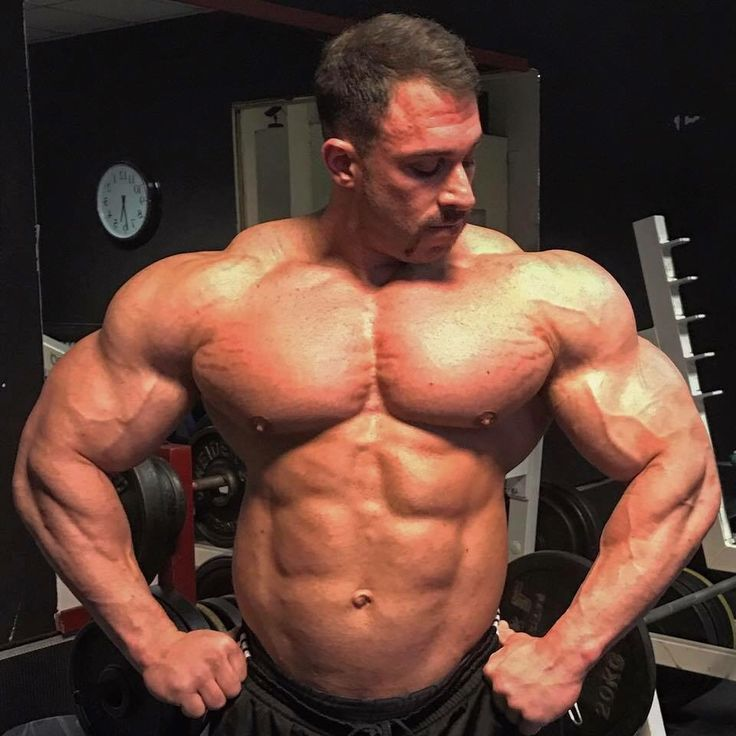 Pin by Just Jack on Celebs | Muscle men, Body building men