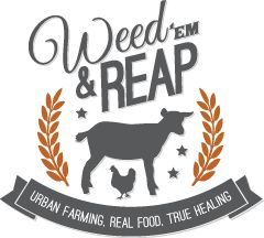 Weed'em & Reap -- Where has this blog been all my life?! This woman sounds like me, and her meal plans are organized around a lifestyle I can totally do. She plans meals around real foods, not processed, but isn't freaking out about being vegan/paleo/gluten free/fad eating...or about going out to eat on the weekends. Yay!