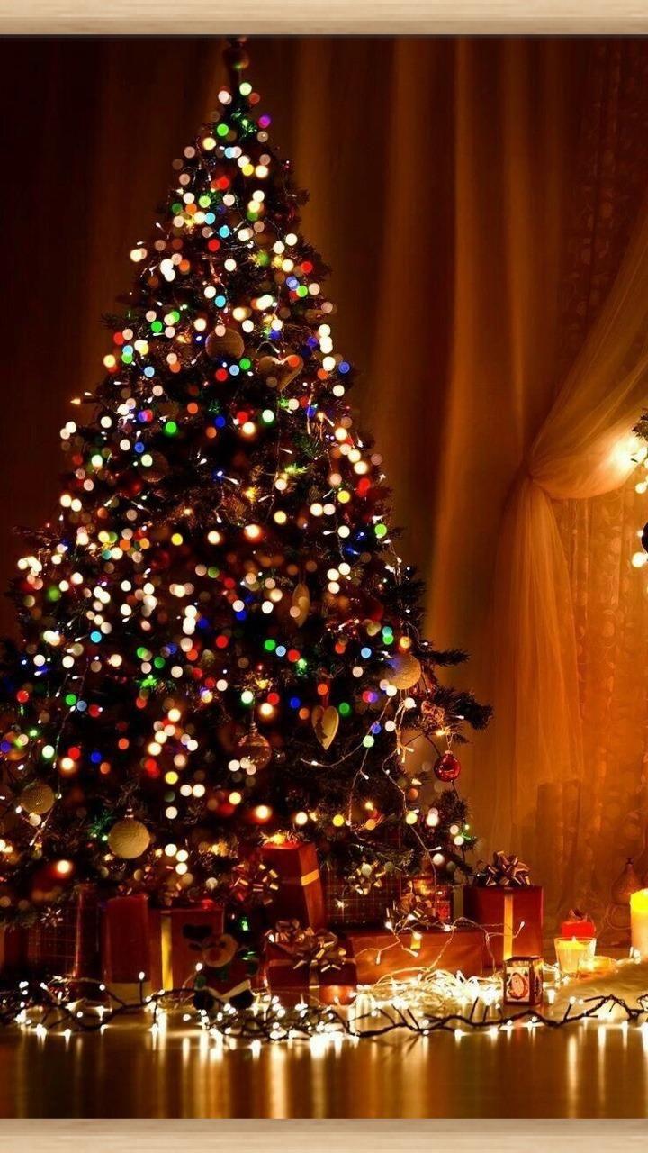Joyeux Noel Joyeuses Fetes Fetes Joyeuses Joyeux Noel Ht Christmas Tree Wallpaper Iphone Merry Christmas Wallpaper Christmas Phone Wallpaper