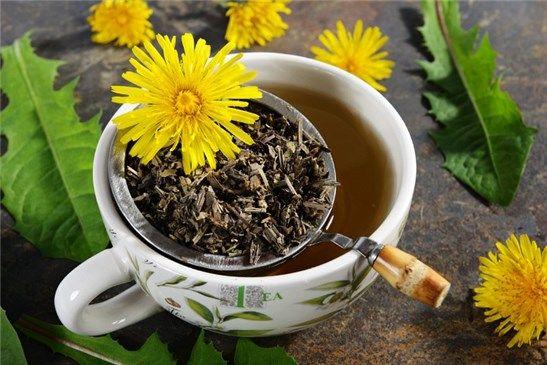 té de raíz de diente de león