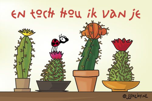 Stuur gratis super originele e-cards van Jij is Lief.nl