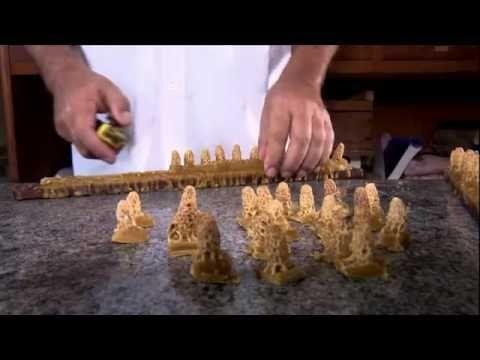 Abelhas Rainha criadas em laboratório faz Colmeias produzir mais mel - YouTube