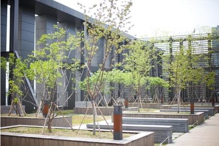 미디컴 옥상 정원