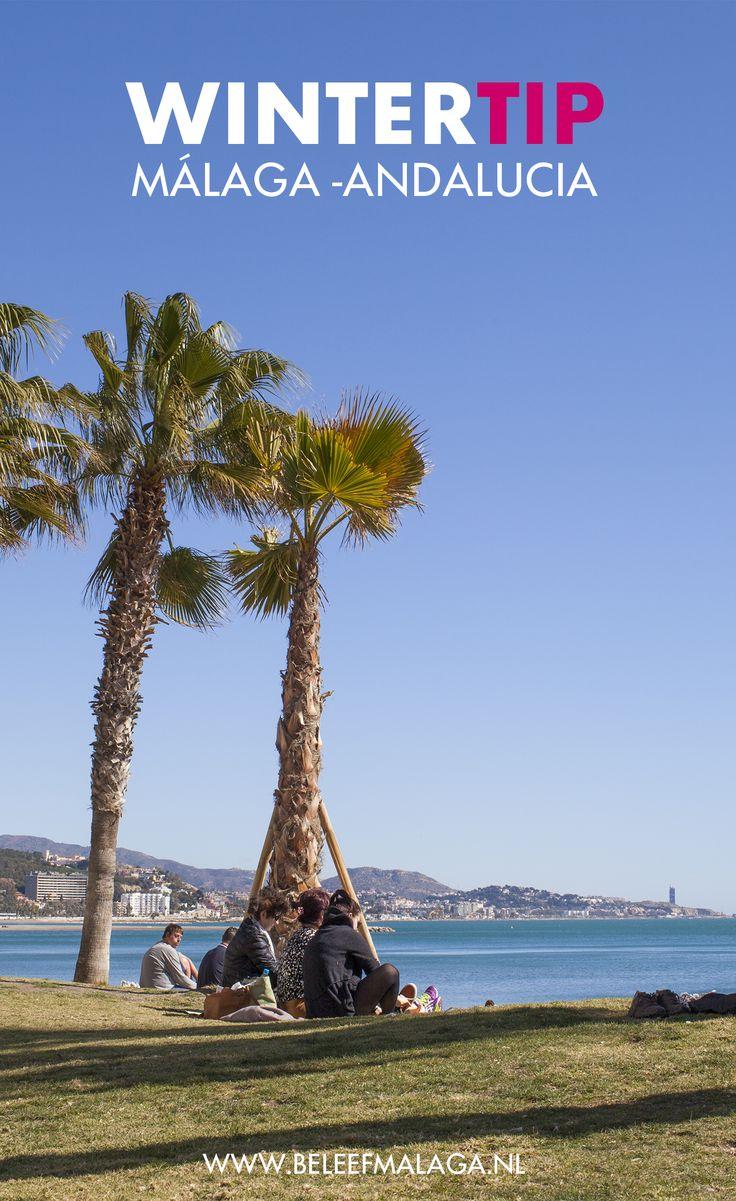 Op zoek naar een zonnige citytrip in de winter? Málaga is ook in de winter een heerlijke stad. De stad is perfect voor een korte vakantie of stedentrip!