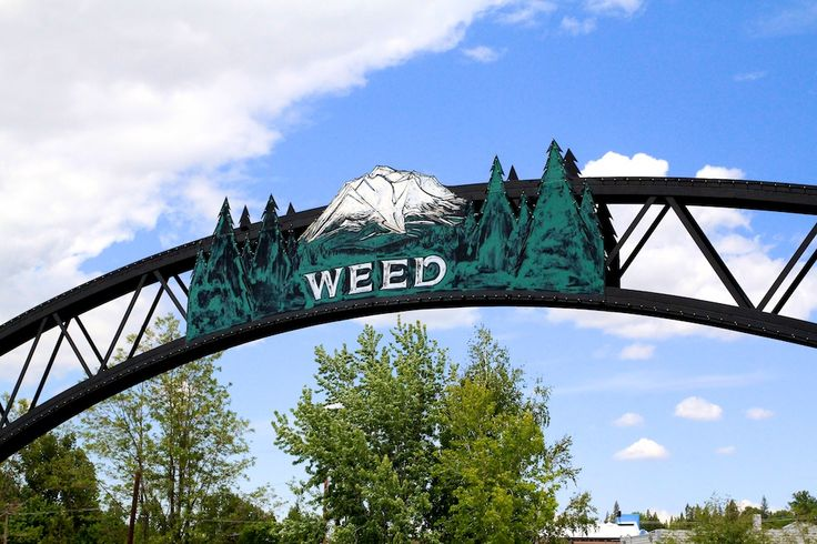 Weed, California: 3,000 People and a Gift Shop | California Through My Lens