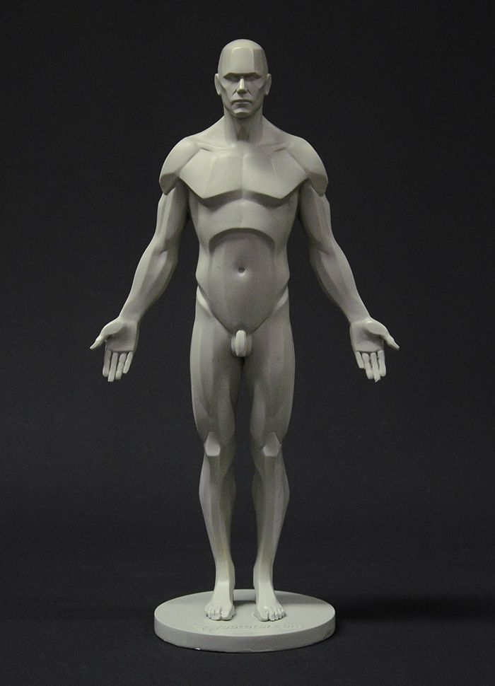 The male planar reference figure is available and ready to go  https://shop.3dtotal.com/figures/anatomy-figure/male-planar-figure.html                                                                                                                                                      More
