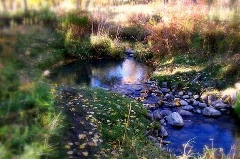Autumn - Calgary, AB