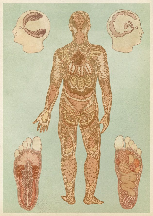 38 best Artistic Anatomy images on Pinterest | Anatomy, Artistic ...