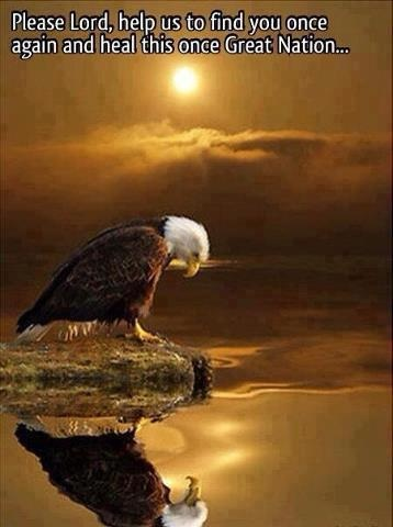 America the Beautiful Land of The Free and The Brave..