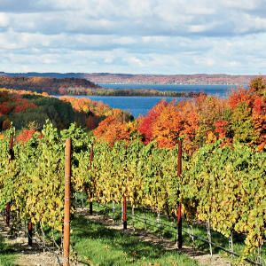 Chateau Grand Traverse, Traverse City, Michigan.   In the nation's fourth-largest grape-growing state, Chateau Grand Traverse winery welcomes travelers to a property overlooking a vineyard and Grand Traverse Bay. The inn also anchors a visit to other wineries on Lake Michigan's Old Mission Peninsula.