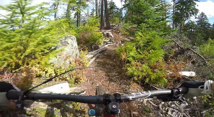 Mountainbiking trifft Bildstabilisierung