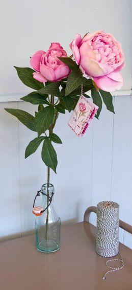 Het verhaal van de trots van de pioenroos in een illustratief boekje hangend aan een boeket of enkele bloem.