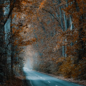 "500px / Photo ""Tunnel"" by Ildiko Neer"