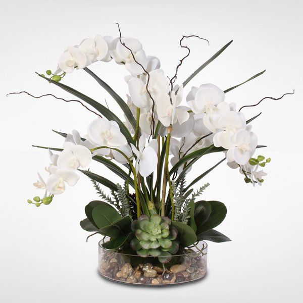 Phalaenopsis Orchid With Succulents Floral Arrangement In Pot Orchid Arrangements Orchids Artificial Orchids