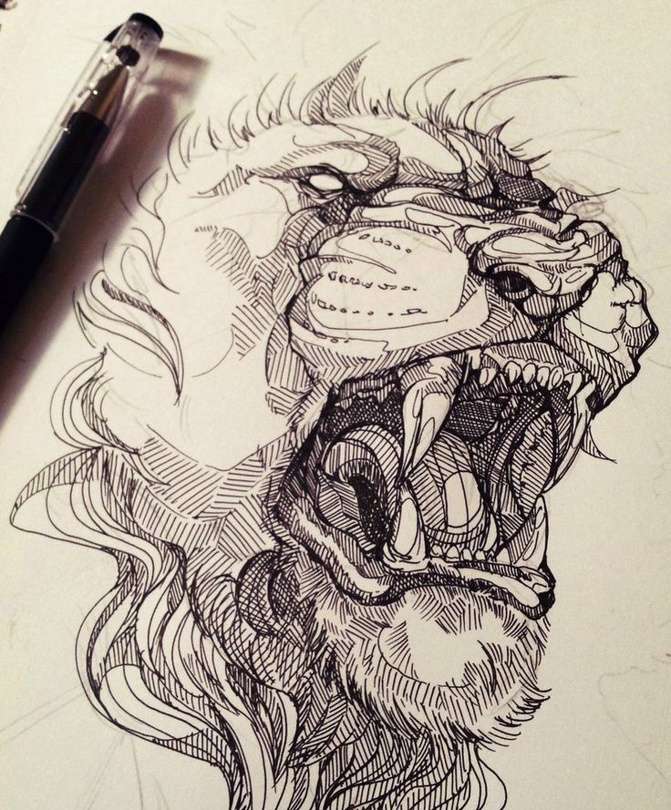 The work in progress shot of my lion piece I did todayYou can see more here wolfskulljack.tumblr.com