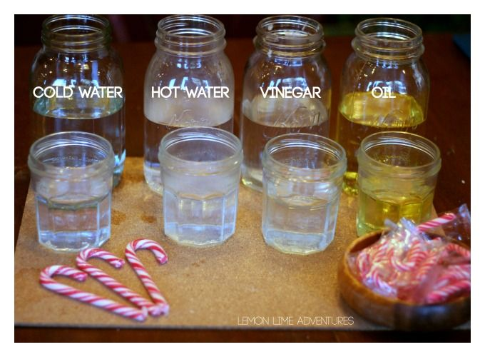 Dissolving Candy Cane Experiment- Science for Kids at Christmas Time❤️