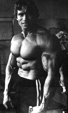 cool Arnold Schwarzenegger...