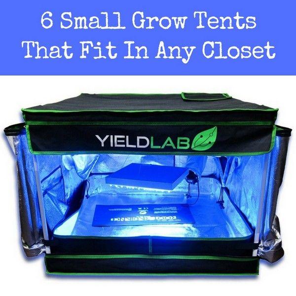 Small grow tent