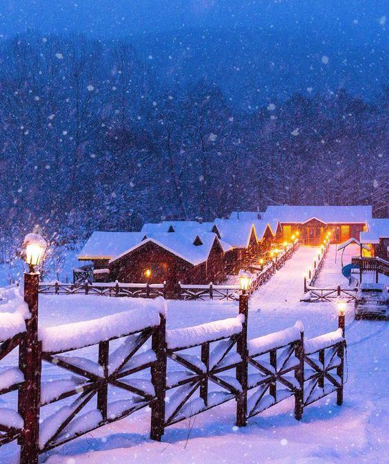A winter tale / Abant,Bolu,Turkey.