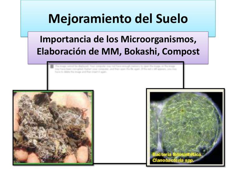 Elaboracion MM,abonos organicos y biofermentos, curso JICA 2012. by Rolando Tencio via slideshare