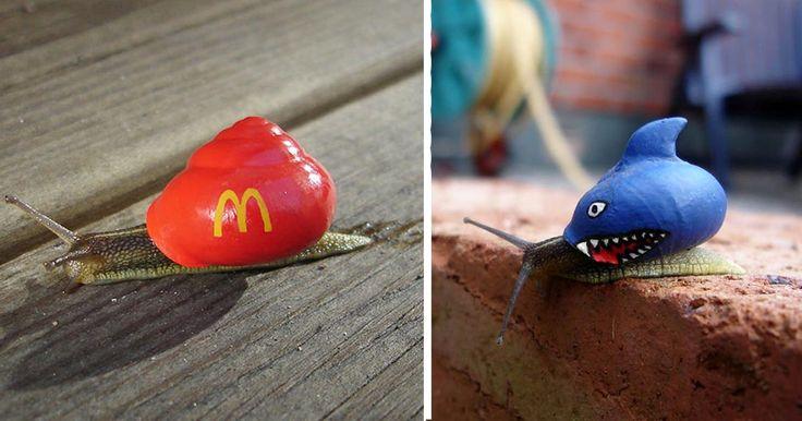 Quand un artiste décore la coquille d'escargots vivants