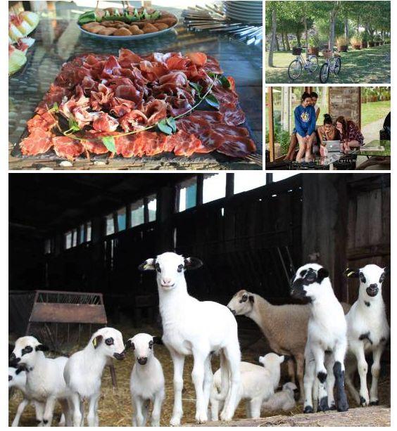 Montesinho y Quinta das Covas, gastronomía y... | A. Montesinho Turismo