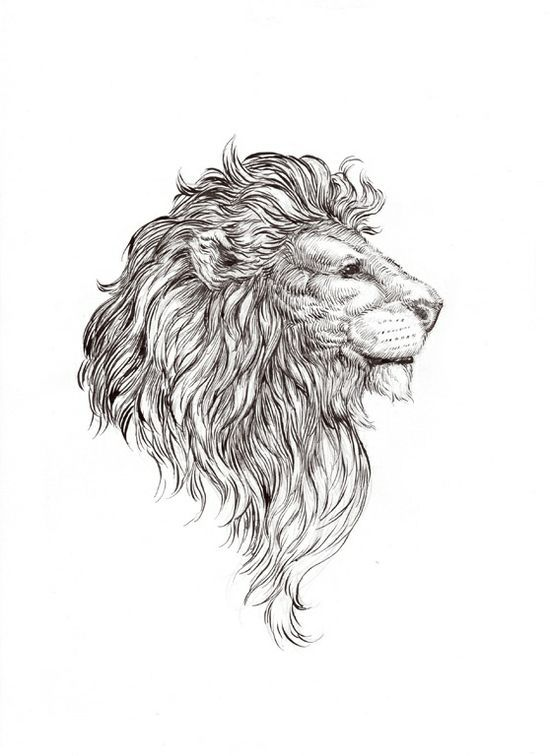 I Should've Gotten This As My Lion Tattoo... Maybe There's Hope For Another? - Tattoo Ideas Top Picks