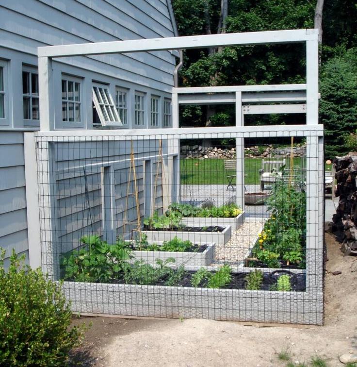 organic garden for backyard