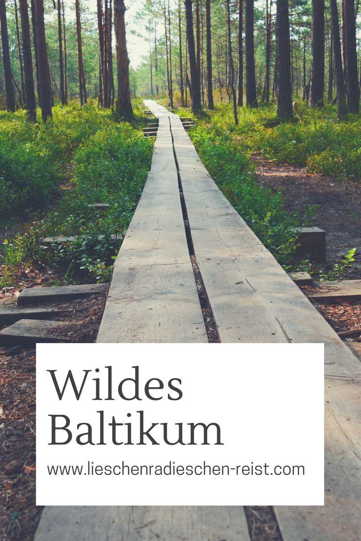 Lettland, Litauen und Estland sind gänzlich verschieden und das macht den Charme des Baltikums aus. 2016 haben Freunde und ich einen Roadtrip durch die Ostseestaaten gemacht und es war traumhaft.