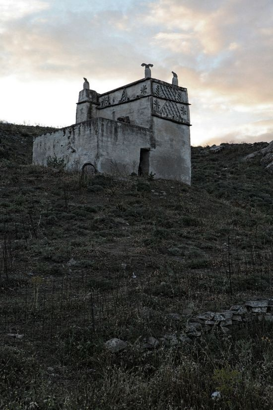 Stavloi_tinos_island_mara_desypris_filep_motwary_©_2012_05349