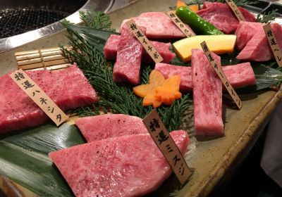 Ishidaya Honten Kobe Beef Yakiniku, a restaurant in Kobe that serves authentic Kobe beef. Super delicious!