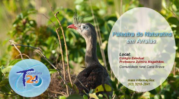 Comunidade de Arraias recebe nesta quarta-feira, 8 um Ciclo de Palestras Ambientais do Naturatins
