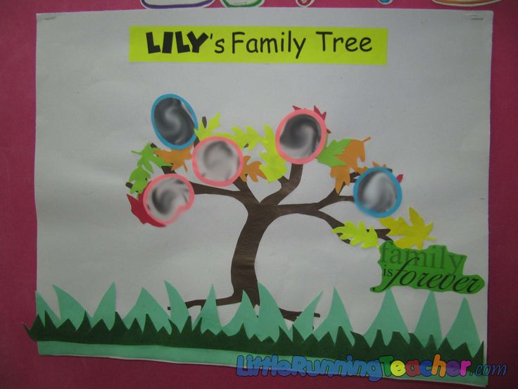 family tree bulletin board ideas for preschool 15 best teach gt gt history images on family tree 615