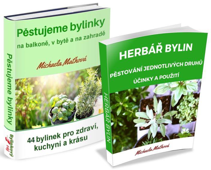 Podrobný postup jak pěstovat bylinky ze semen v bytě, na balkoně i na zahradě. Bylinky, které lze vysévat také napodzim nebo celoročně.