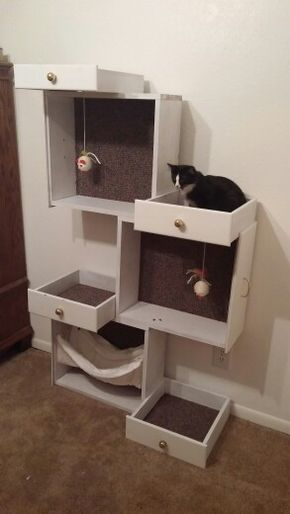 "Oreo""s New Cat Tree made from drawers"