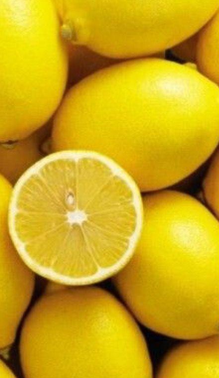Citroenen en sinaasappels heb ik natuurlijk in veelvoud in de tuin. Naast gewoon gebruik en sapjes, drogen als versiering gooi ik er sommige in zijn geheel in een diepvrieszakje alsook enkele gesneden in schijfjes. De bevroren schijfjes sinaas en citroen zijn top in thee en staan mooi in je waterglas als ijsblokje. En in zijn geheel: gewoon in bevroren toestand de gewenste hoeveelheid raspen met schil en al. De mijne zijn natuurlijk niet bespoten maar koop wel bioproducten dan. Ook voor…