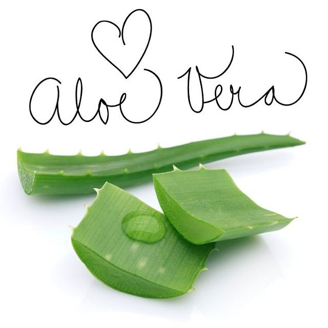 Did you know? A lot of our products contain high amounts of natural aloe vera, which is an excellent moisturizer and skin healer! #love#funfact#health#healthy#inspire#cleaneating#organic#skincare#beauty#style#kbh#cph#green#fitspo#vegan#vegetarian#holistichabits#style#lifestyle#bestofinsta#instadaily#mandag#monday#tipoftheday#calligraphy#healing#skin