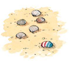 La búsqueda del tesoro en la playa | Looking for the treasure on the beach #childrenactivities #summertime