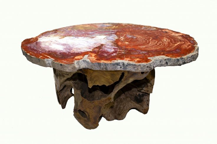 Petrified Wood slab cocktail table with natural teak base. The petrified wood slab is from the Triassic Period,180 to 225 million years ago when this tree lived. The downed tree settled in mud that cut off life supporting oxygen to bacteria that would subsequently decay the soft tissues of the tree.Over many periods of time, mineral rich solutions entered the fallen tree leaving behind deposits that then mineralized the tree tissues into what it is today.