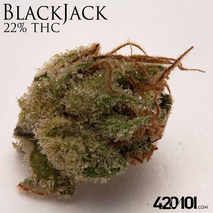 368 Best Cannabis Strains Images On Pinterest