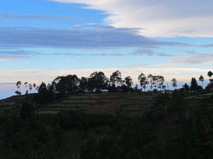 Bantaeng, farming bliss