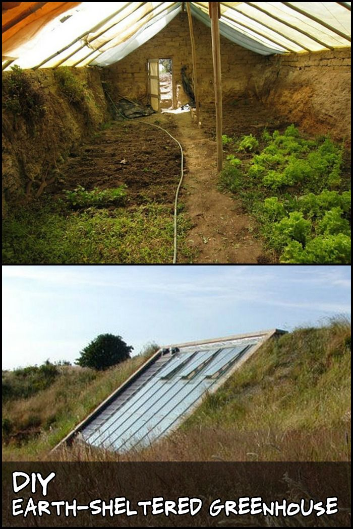 25 best ideas about diy greenhouse on pinterest for How to build an earth sheltered home