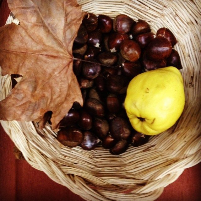 Dia de S.Martinho#lourézio #dazulterra #autumn #atmosphere