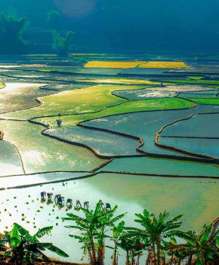 Voyage a Lai Chau Lai Chau est une région situé au Nord – Ouest du Vietnam. Voyagez à Mai Chau pour contempler des paysages magnifiques et vous immerger dans la culture originale des habitants. Vous pouvez découvrir des cavernes pittoresques, des cols dangereux et des escalades cachés derrière des forêts…